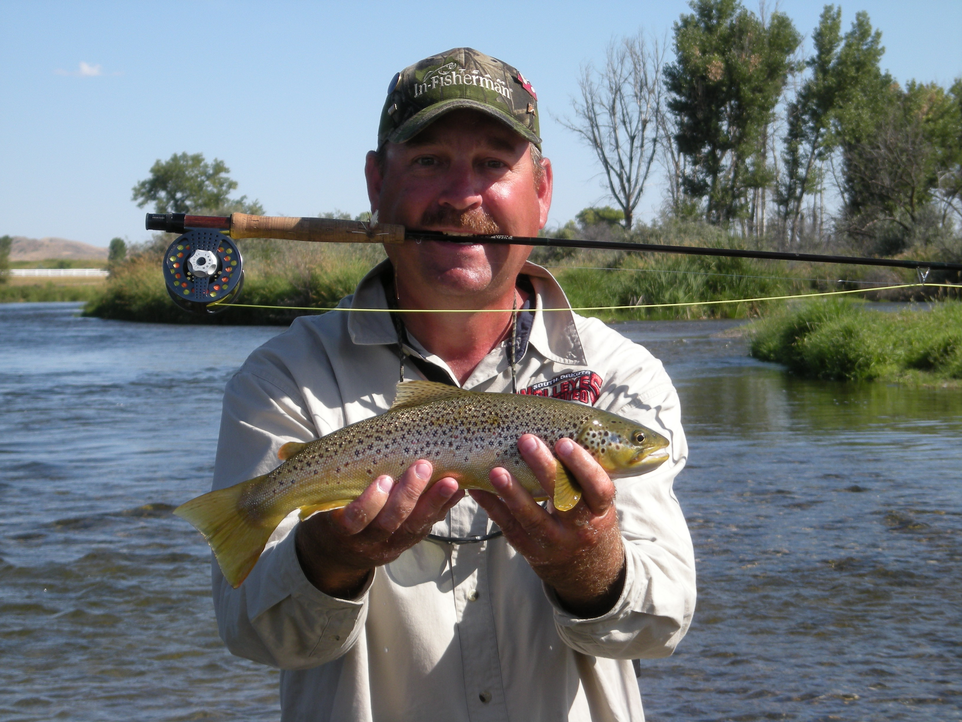 Channel cat barbs and backlashes for Brown trout fly fishing