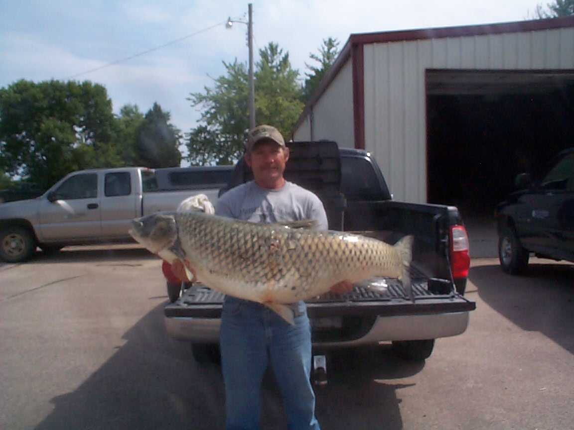 Fishing for grass carp in maryland for Fishing for carp